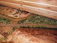 Mye nytt av grønt og brunt langs sporet
